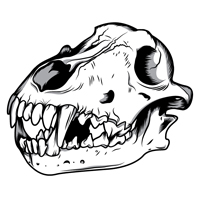 wolf-skull-preview