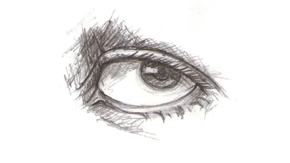 Line Drawing Eye : Drawing vector portraits part the eyes pixel