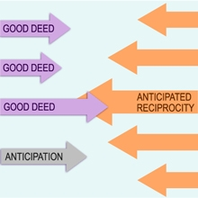 Anticipated Reciprocity Online – To The Limit of Ethics
