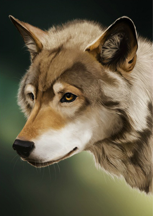 20 Photoshop Tutorials For Improving Your Digital Painting