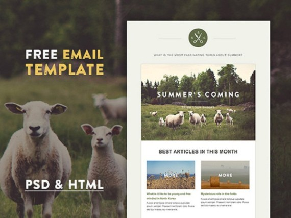 8-Free-New-Responsive-Email-Templates-1
