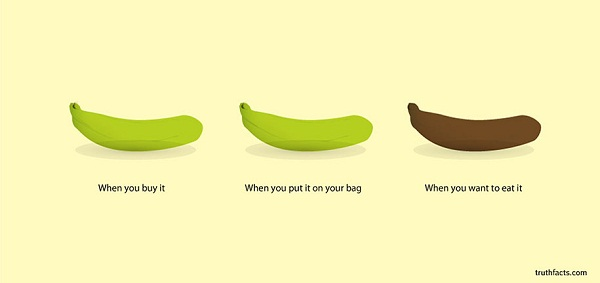 7-Basic-Truths-of-Everyday-Life-Illustrated-with-Accurate-Graphs-6