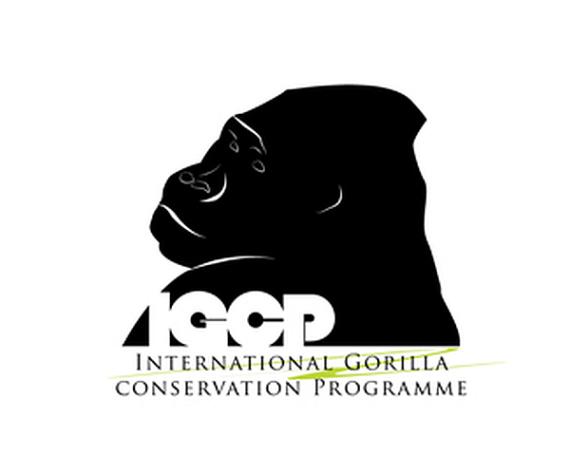 30-Most-Creative-Animal-Logo-Designs-18