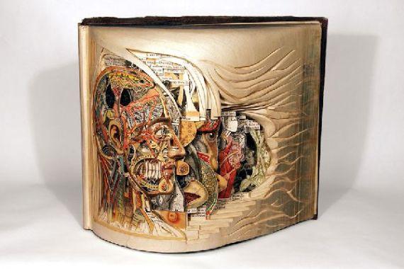 Artist-of-the-Week-Sculptural-book-art-by-Brian-Dettmer-2