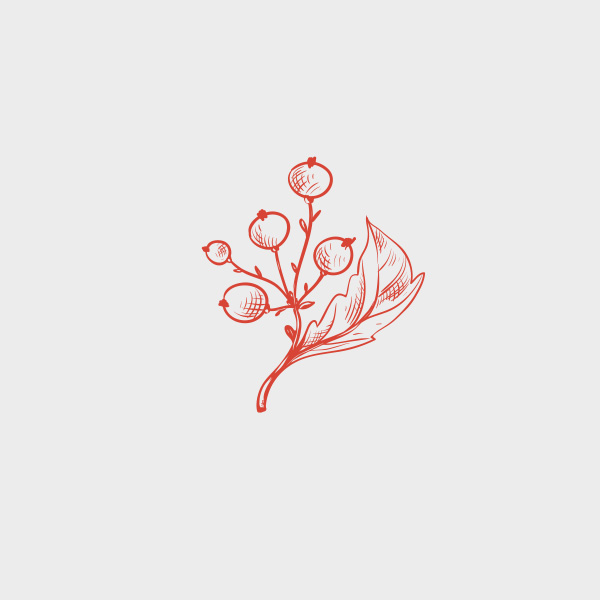 Free Vector of the Day #732: Vintage Branch