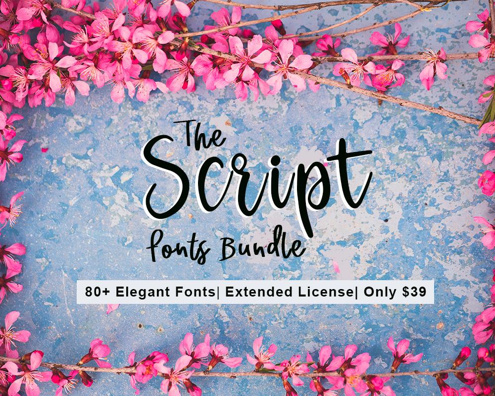 Script Fonts Bundle - Handwritten, Cursive, Signature, Calligraphy Fonts