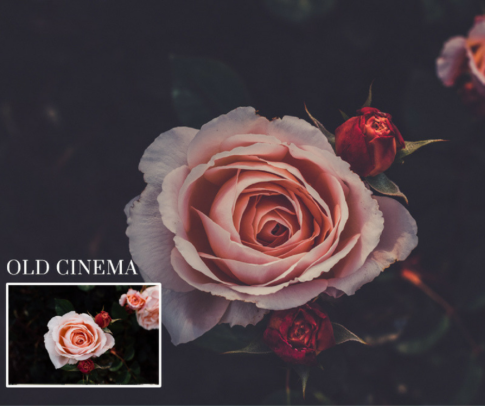 free lightroom presets old cinema
